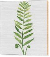 Green Fern Watercolor Art Print Painting Wood Print