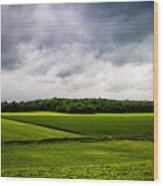 Green Fields Wood Print