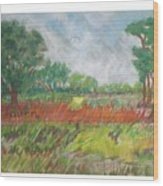 Green Fields Of Spring Wood Print