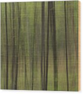 Green Forest Wood Print