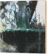 Green Fountain Wood Print