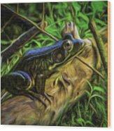 Green Frog On A Brown Log Wood Print