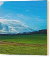 Green Grass And Blue Sky With White Clouds Wood Print