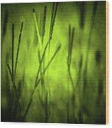 Green Grass Grow Glow Wood Print