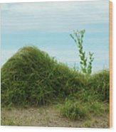 Green Grass Mountain Wood Print