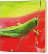 Green Grasshopper Wood Print