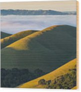 Green Hills And Low Clouds Wood Print
