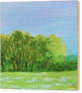 Peaceful Summer  Wood Print