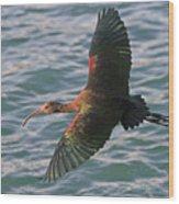 Green Ibis 6 Wood Print