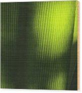 Green Illusions Wood Print