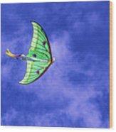 Green Kite Wood Print