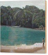 Green Lagoon Wood Print