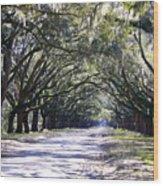 Green Lane Wood Print