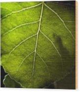 Green Leaf Detail Wood Print