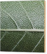 Green Leaf Geometry Wood Print