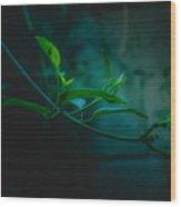 Green Leaf Hanging Wood Print