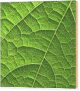 Green Leaf Structure Wood Print