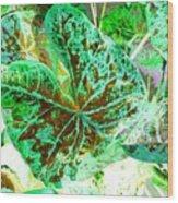 Green Leafmania 1 Wood Print