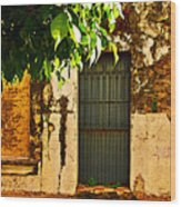 Green Leaves And Wall By Michael Fitzpatrick Wood Print