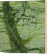 Green Marble Wood Print