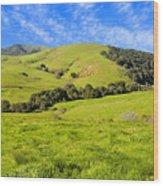 Green Meadow Santa Ynez Valley Ca Wood Print