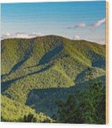 Green Mountainside Wood Print