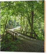 Green Nature Bridge Wood Print
