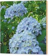 Green Nature Landscape Art Prints Blue Hydrangeas Flowers Wood Print