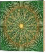 Green No2 Wood Print