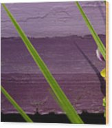 Green On Purple 6 Wood Print