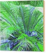 Green Palm Wood Print