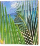 Green Palm Leaves Wood Print