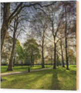 Green Park London Wood Print