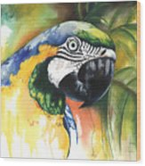 Green Parrot Wood Print by Anthony Burks Sr