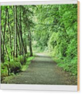 Green Path Wood Print