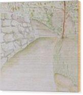 Green Path Wood Print