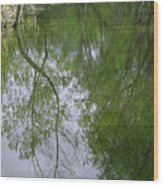 Green Peace - Trees Reflection Wood Print