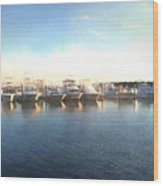 Green Pond Harbor Wood Print