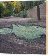 Green Puddle Wood Print