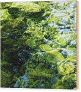 Green Reflection Wood Print