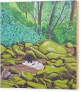 Green Rocks Wood Print