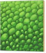 Green Scales Wood Print