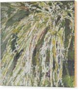 Green Reeds Wood Print