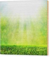 Green Spring Grass Against Natural Nature Blur Wood Print