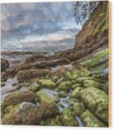 Green Stone Shore II Wood Print