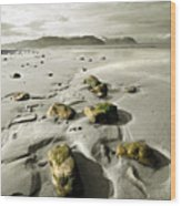 Green Stones On A North Wales Beach Wood Print