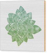 Green Succulent 1- Art By Linda Woods Wood Print