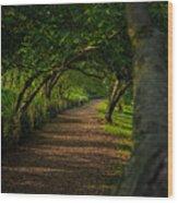 Green Summer  Wood Print