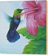 Green-throated Carib And Pink Hibiscus Wood Print
