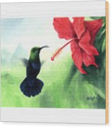 Green-throated Carib Hummingbird And Red Hibiscus Wood Print